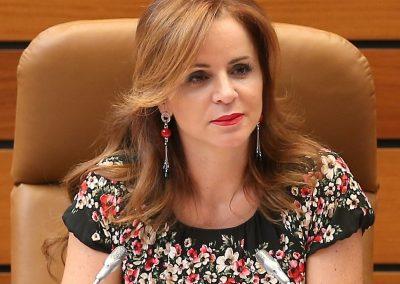 Silvia Clemente Municio (Cortes de Castilla y León)
